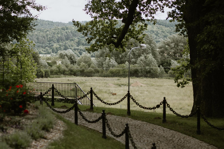 klasyczne-wesele-zamek-dubiecko-0046